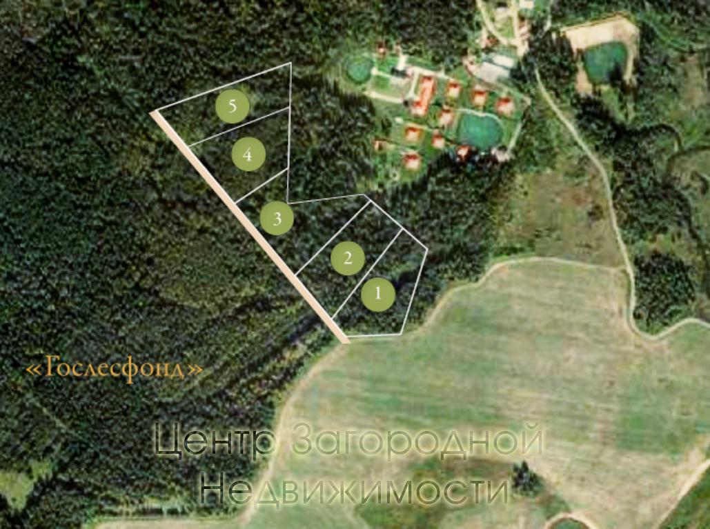 Московская область, Наро-Фоминский район, садовое товарищество Бирюлево, садовое товарищество Бирюлево, 35 10